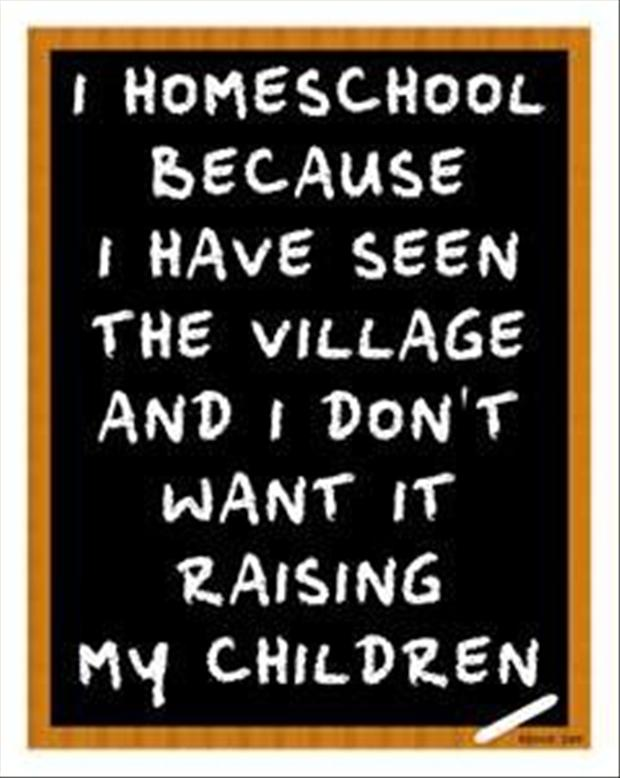 i-homeschool-my-kids-funny-quotes